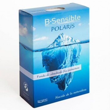 Funda Protectora de Almohada Polaris Impermeable Bsensible en tencel